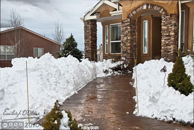 My Shoveled Walkway
