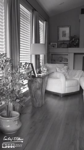 Living Room - B&W