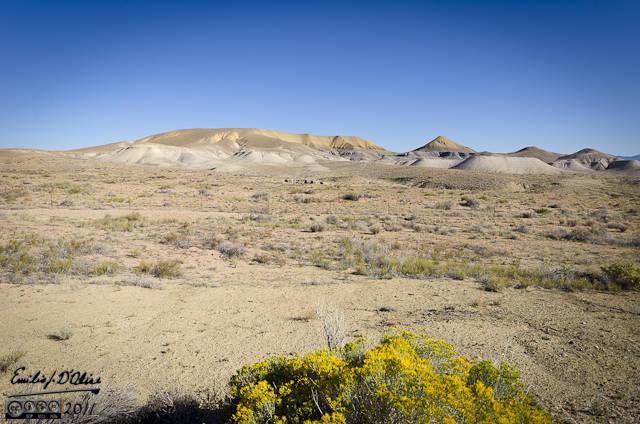 Interesting hills and sparse vegetation