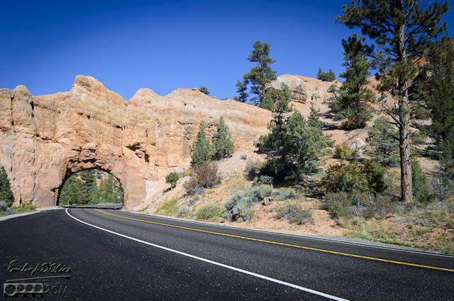 One of two arches you drive through on UT-12