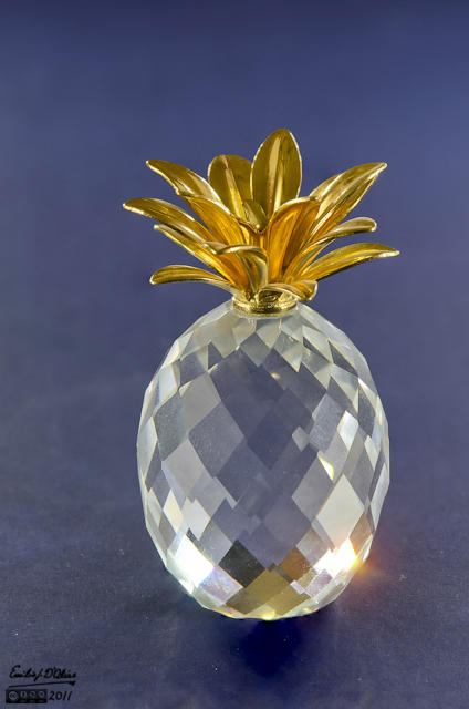 Miniature Pineapple - Macro Photography + Blended Layers