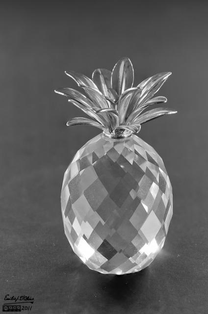 Miniature Pineapple - Macro Photography + Blended Layers - B&W