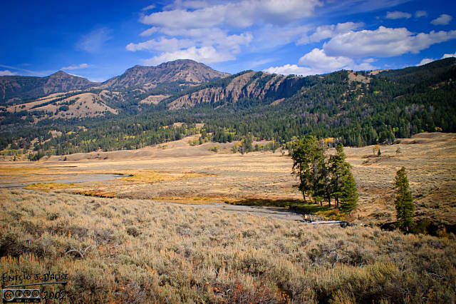 Part of the Lamar Valley panorama in the SmugMug gallery