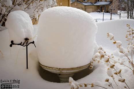 Just like the last snowstorm, the birdbath looks like a giant cake. A frosted cake . . . I slay me somtimes.