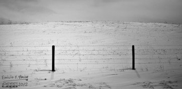 The Fence, The Snow, and The Mound