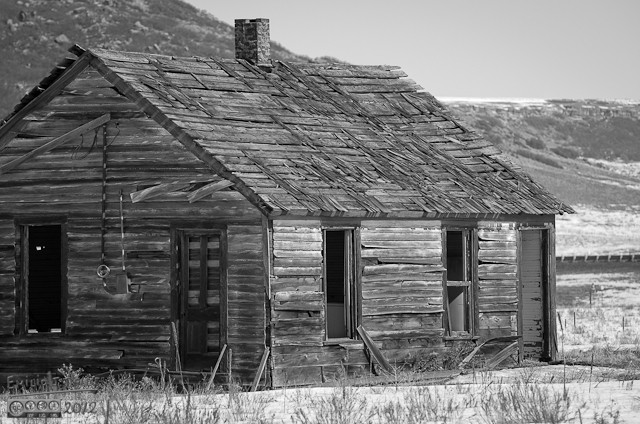 Cabin - B&W single image