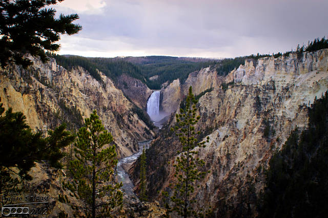 Yellowstone Canyon Lower Falls - Artist Point