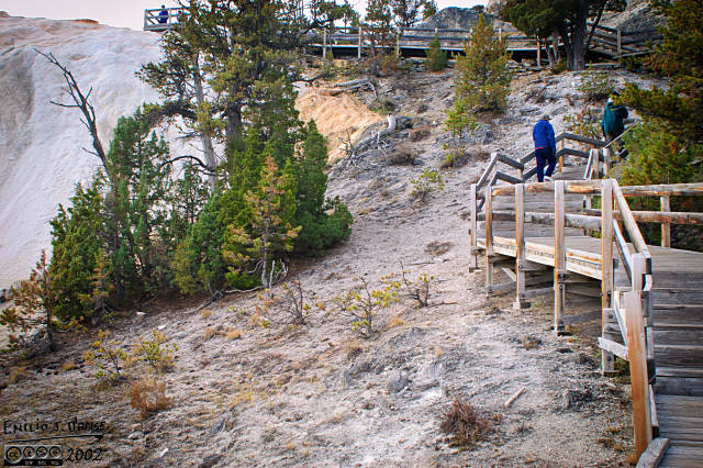 Boardwalks allow visitors (like my father-in-law) to safely examine the terraces