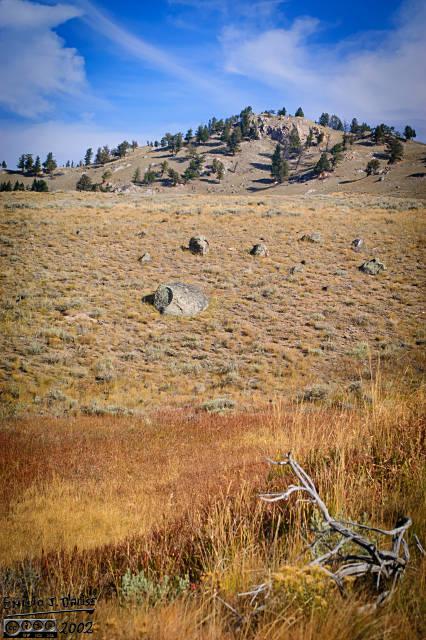 """The """"look"""" of Blacktail Deer Plateau"""