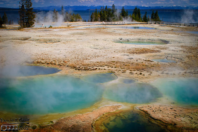 The West Thumb Geyser Basin had the best setting to show off its deep blue pools and surrounding mineral deposits.