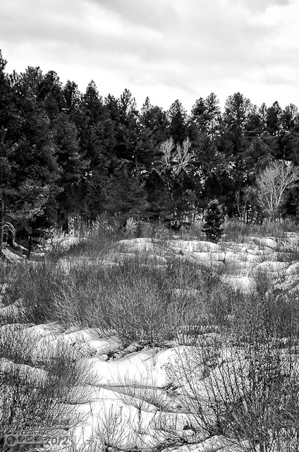 Stream-B&W_Custom_hdr-9137-9139-Upper Crop