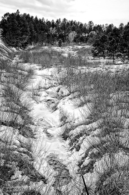 Stream-B&W_Custom_hdr-9137-9139