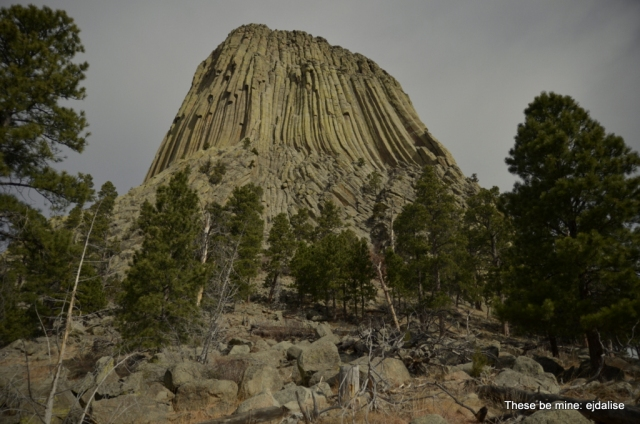 One of hundreds of photographs of Devil's Tower that I now have to process.