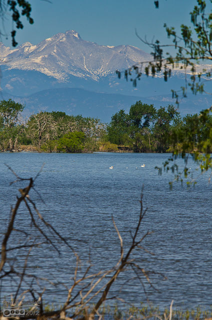 And of course, always the background of the lake.  Those are some of the white pelicans which unfortunately, never swam close.