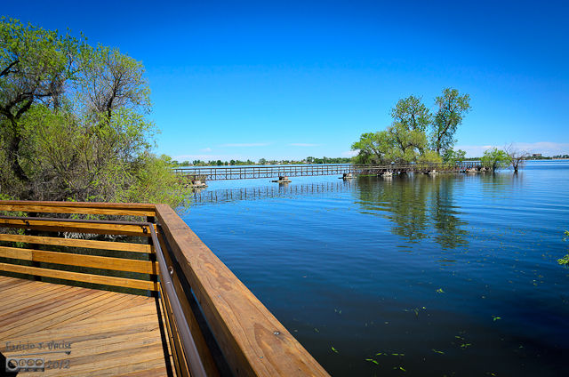a picture of the boardwalk leading to the gazebo on the little island in the middle of the lake