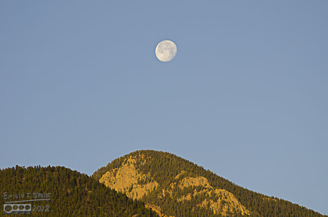 By the time I was on Ute Pass the sky had lightened considerably . . . but the moon still fought to keep from becoming nothing more than a brighter-then-normal smudge in the vastness of the empty sky.