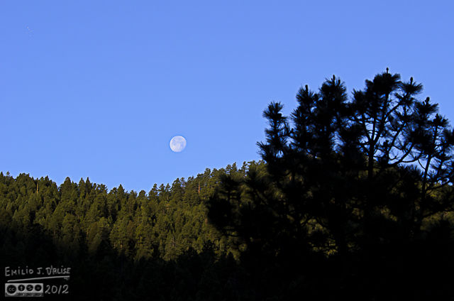 I might have missed the moon setting the previous day, but I had a good view this time around.