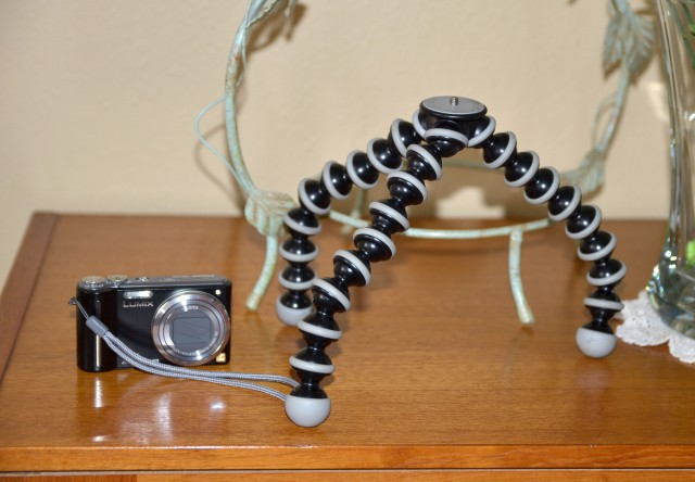 Lumix ZS3 (12x Zoom) and GorillaPod