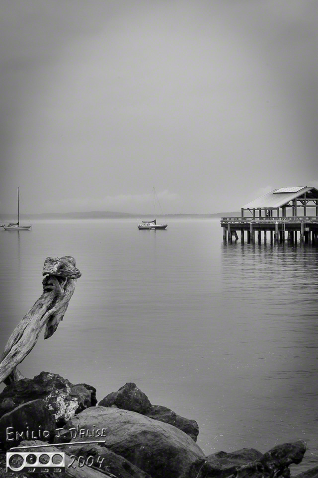 0025-Olympic_Pen_Port_Townsend-2_DIGI