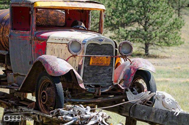 Odd Truck