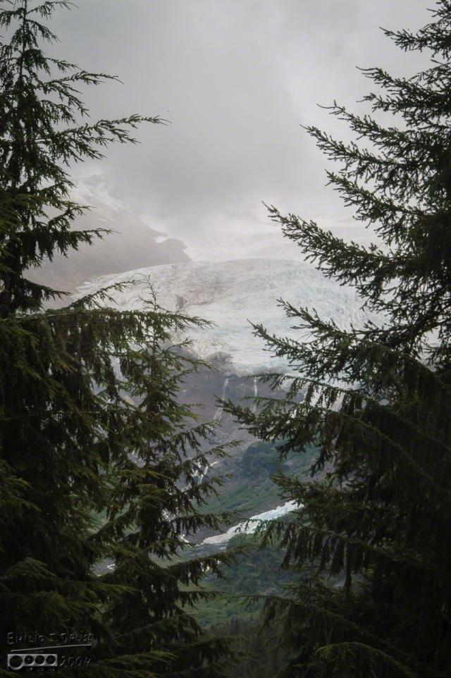 DSC_0025-Mt_Baker_Drive_DIGI