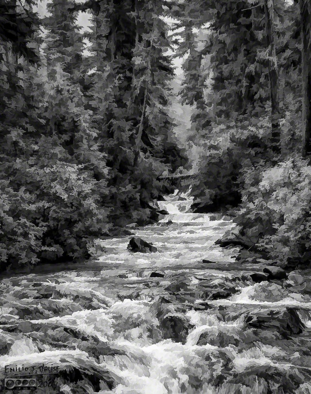 Mt. Rainier stream (B&W oil painting - Topaz Suite)  click for larger view