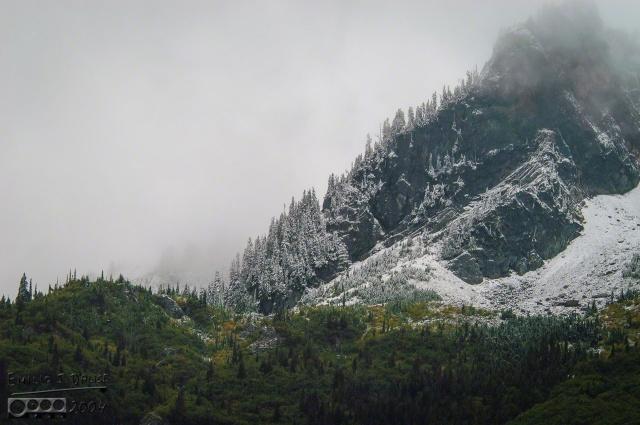 0066-Mt_Rainier_Drive_DIGI
