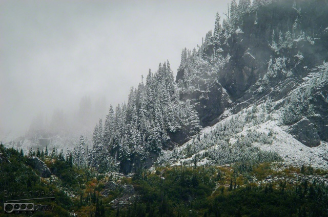 0070-Mt_Rainier_Drive_DIGI