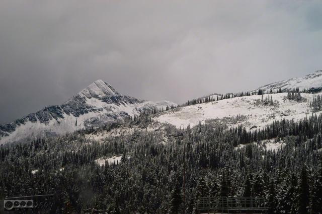 0103-Mt_Rainier_Drive_DIGI