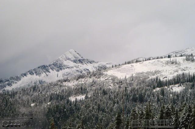 0107-Mt_Rainier_Drive_DIGI