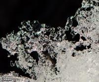 Ice sculptures,