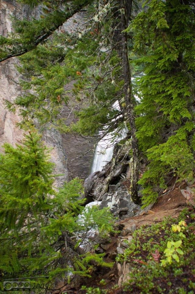 DSC_0004-Mt_Rainier_Drive_DIGI