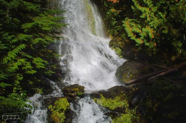 DSC_0021-Mt_Rainier_Drive_DIGI