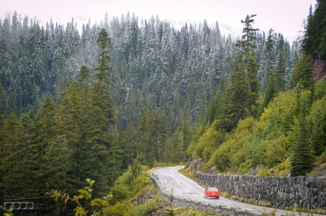 DSC_0096-Mt_Rainier_Drive_DIGI