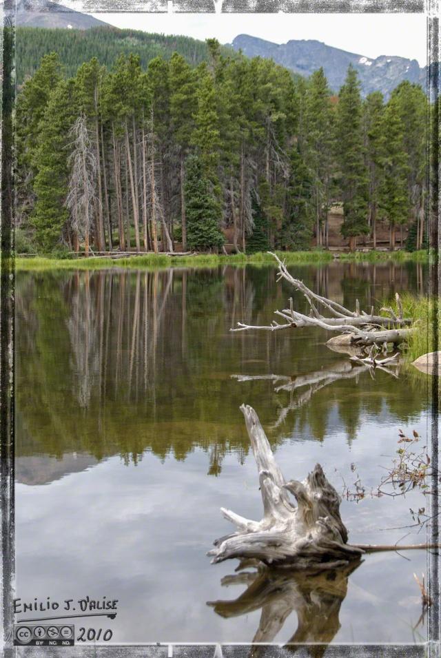 MISC_30JUL2010_12809-2_DIGI