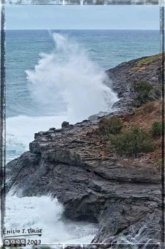 0055_Kauai_Day_1_DIGI