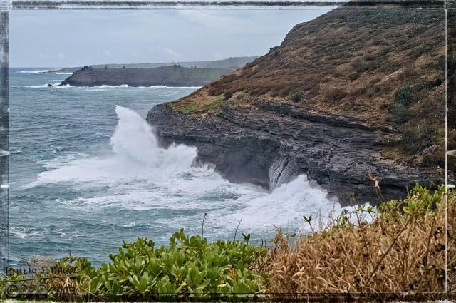 0067_Kauai_Day_1_DIGI