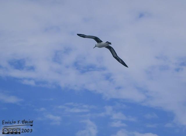 0079_Kauai_Day_1_DIGI