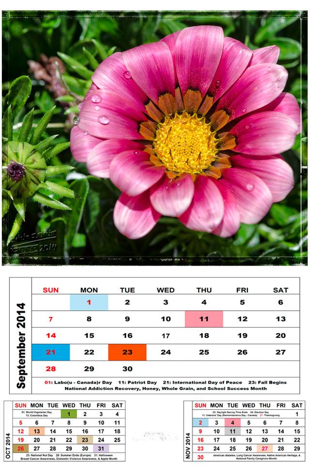 Sep2014-Cal-Flower_Blog-72dpi