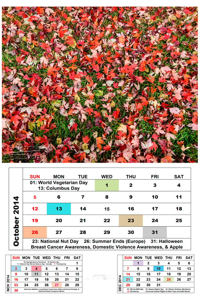 Oct2014-Cal-Leaves_Blog-72dpi