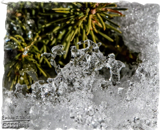 Snow, Winter,