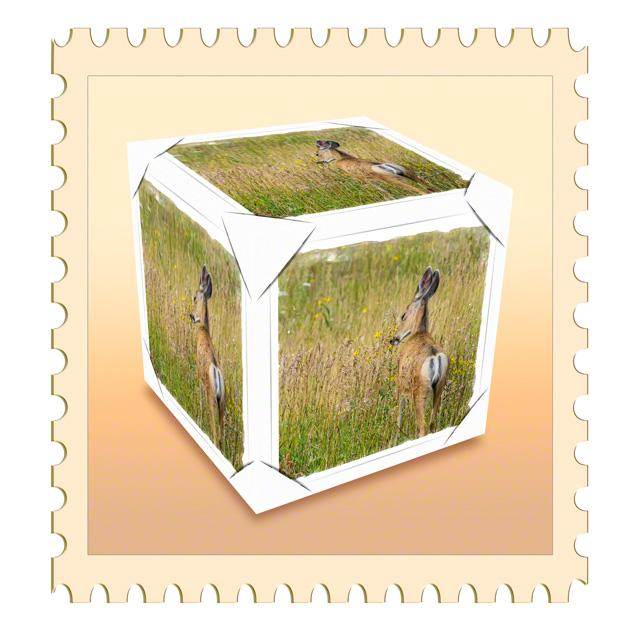 Stamp_DIGI