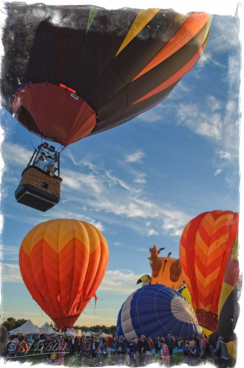 2091_Balloon_Classic_05_A_DIGI