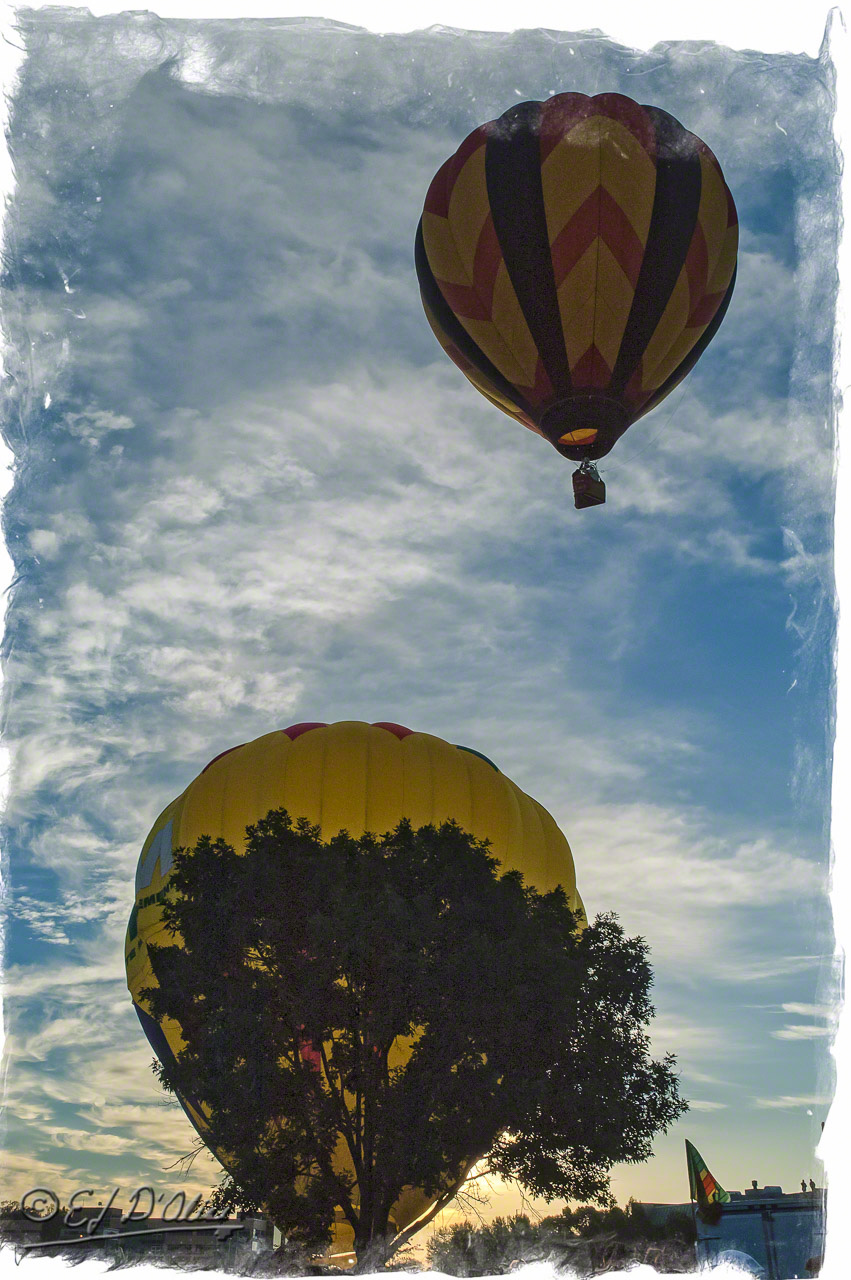 2117_Balloon_Classic_05_A_DIGI