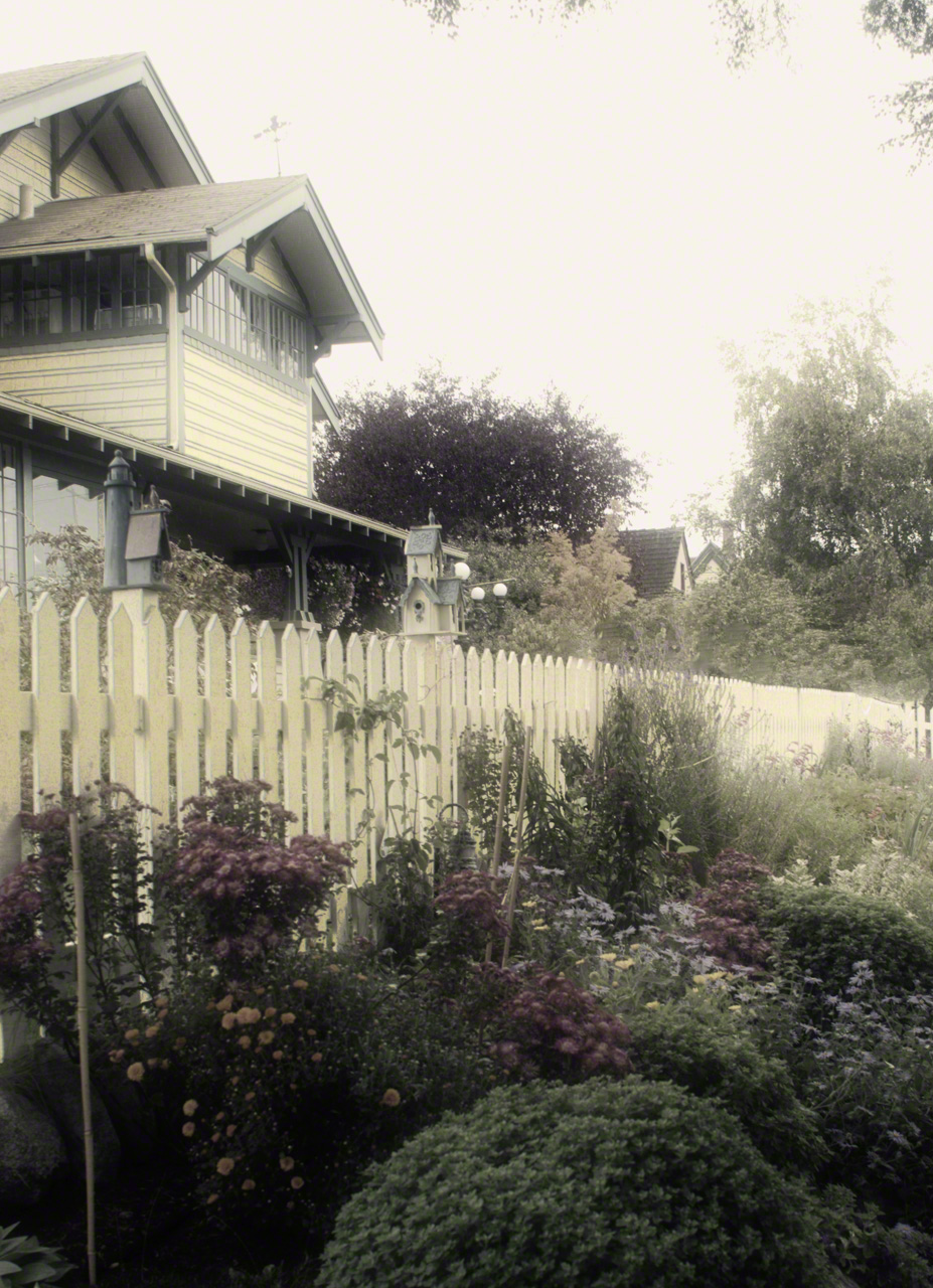 0015-Olympic_Pen_Port_Townsend-Processed-Processed_DIGI