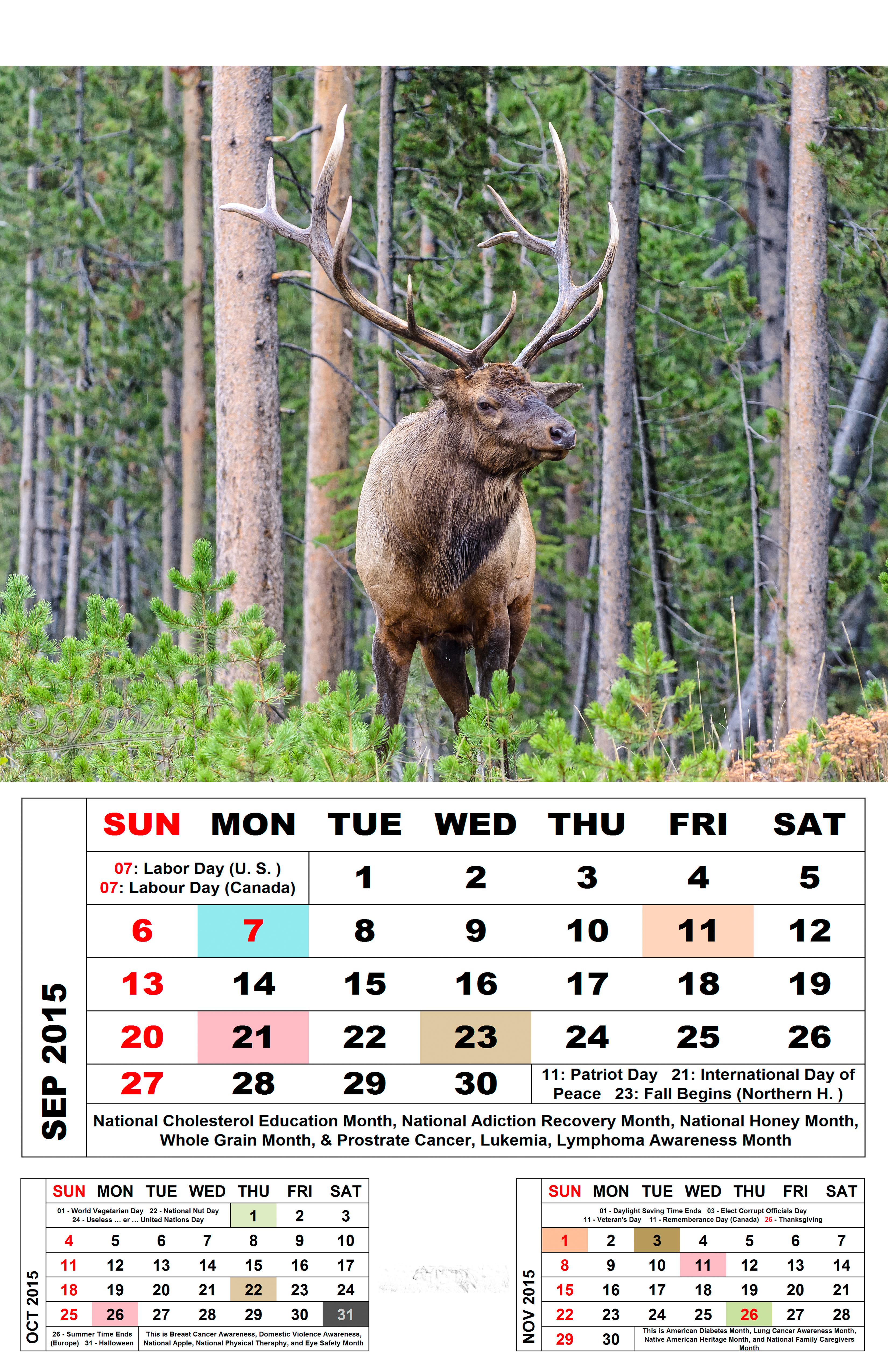 Canada Goose montebello parka online 2016 - September 2015 Calendar   Disperser Tracks