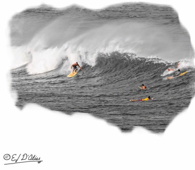 Surfers_DIGI