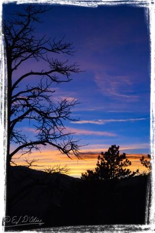 DSC_0051_Sunset_11MAR05-Processed_DIGI