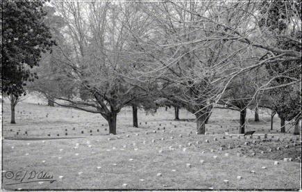 Vicksburg NP,