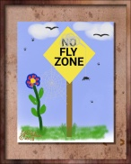 no fly zone. png (1)-PP_DIGI